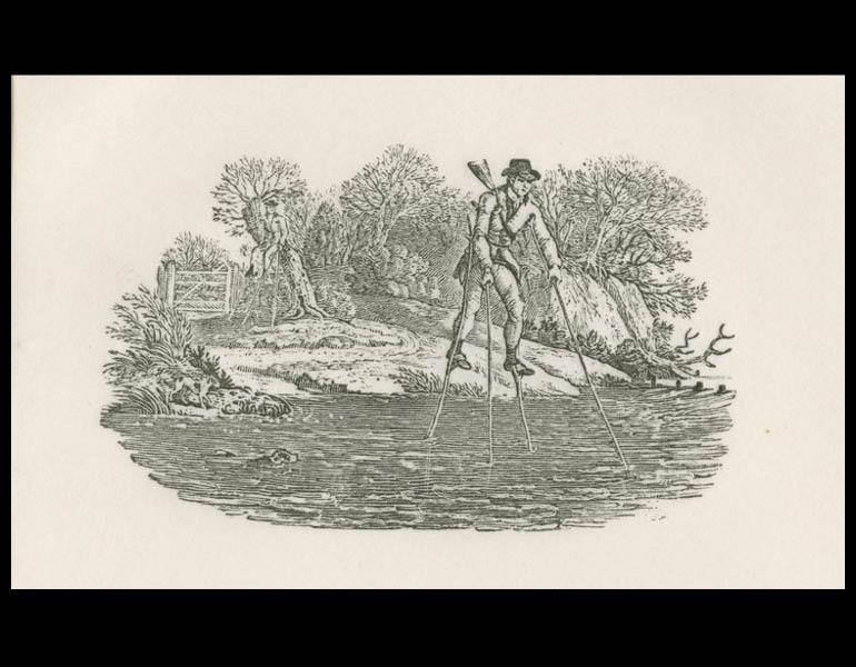 """Thomas Bewick, 1972, Plate 4 """"A vignette from the Water Birds"""""""